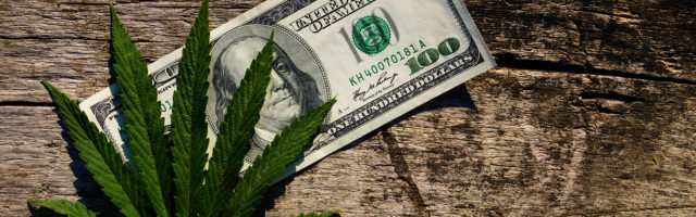 Cover Cannabis Business Income & Extra Expense Page Banner - Money and Cannabis Leaf on Table