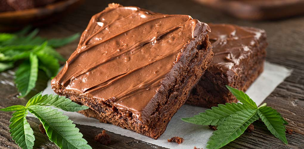 cannabis infused brownie