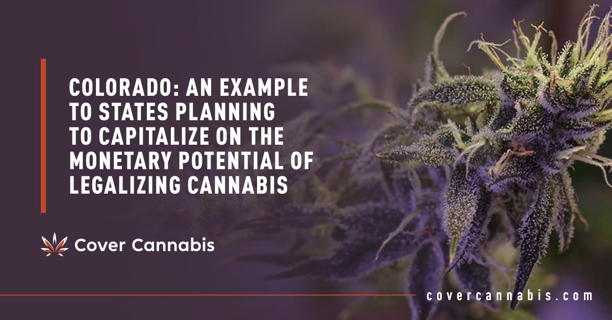Purple Cannabis - Banner Image for Colorado An Example to States Planning to Capitalize on the Monetary Potential of Legalizing Cannabis Blog