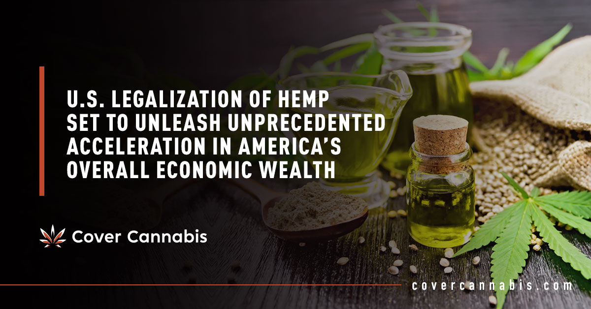 Hemp Seeds and Oil - Banner Image for U.S. Legalization of Hemp Set to Unleash Unprecedented Acceleration in America's Overall Economic Wealth Blog