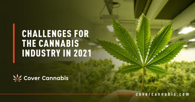Cannabis Leaf - Banner Image for Challenges for the Cannabis Industry in 2021 Blog