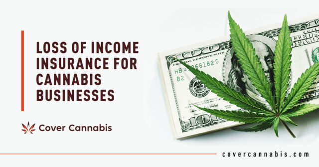 Cannabis and Money - Banner Image for Loss of Income Insurance for Cannabis Businesses blog
