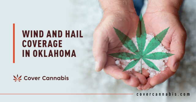 Wind and Hail Cannabis Insurance - Banner Image for Wind and Hail Coverage in Oklahoma Blog